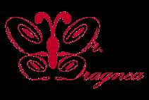 Cabinet Dragnea